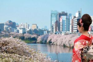 Les lieux incontournables durant vos vacances au Japon